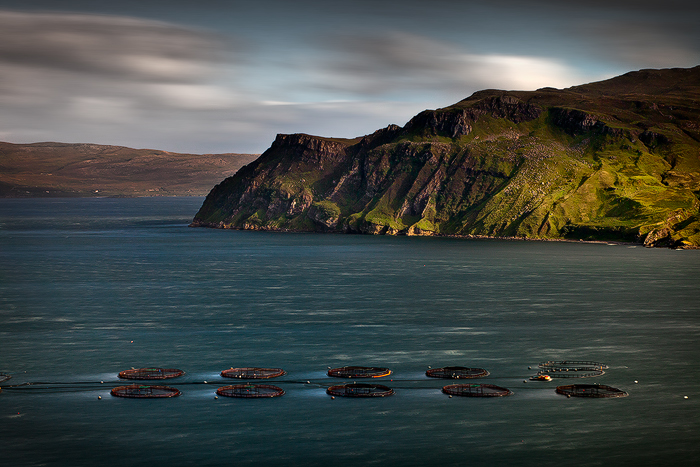 Isle-of-Raasay-Scotland-UK-#08103449