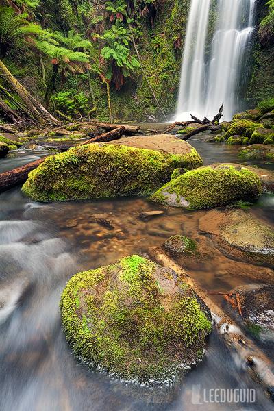 Beauchamp Falls, Great Otway National Park, Australia