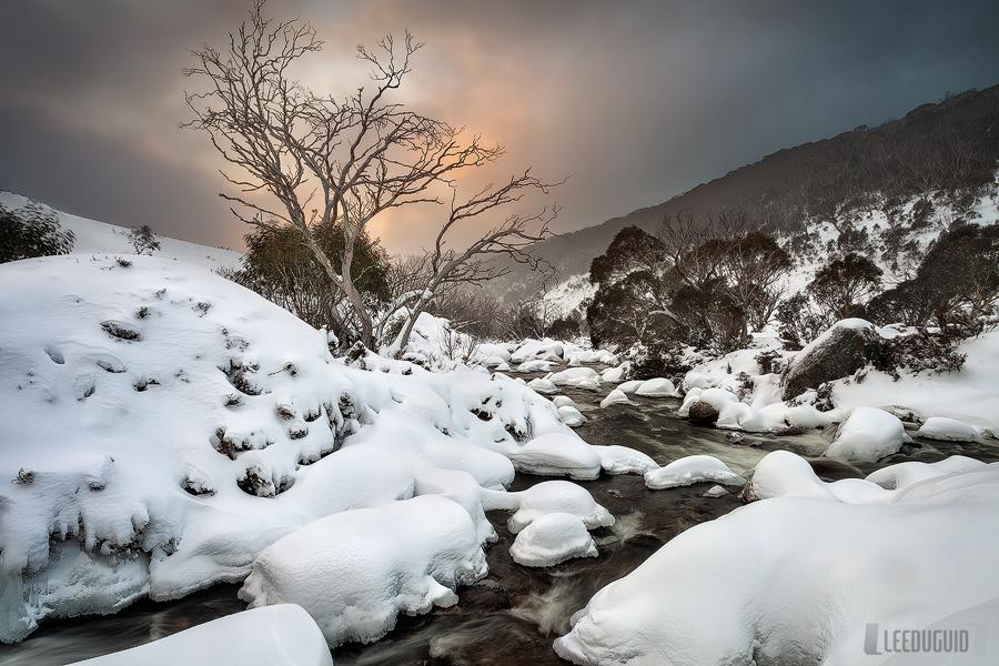 Dead Horse Gap, Kosciuszko National Park, Australia
